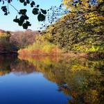 late autumn colors 2