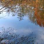 late autumn reflections