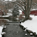 Barn & Stream - NJ Winter