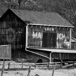Chew Mailpouch