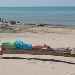 Lounging on Driftwood