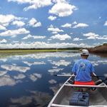 Blakefishing