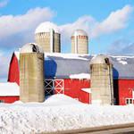 Boonville Farm
