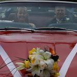 Boquet and Car