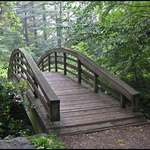Foot Bridge`-