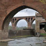 Bridges at Albi