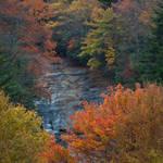 Bubbling Brook Cascade