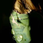 chrysalis