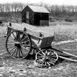 Cart W/O the Horse
