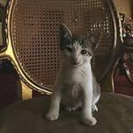 My cutie