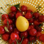 cherries & &quot;nefle&quot;