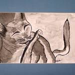 Cher's Kitty Kat inkwash