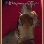 Whspering Hope