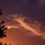 Cirrus Sunset  2