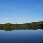 Pond setting