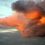 Pinocinose Cloud