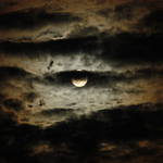 cloudy moon-lit night