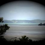 Cockle Bay Views #1