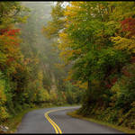 Colorful Parkway