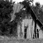 colquitt barn2