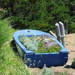 The Flower Boat