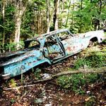 Death Falls Car