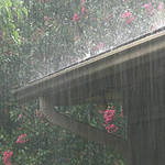 Deluge!