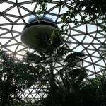 Inside the Dome/Bloedel Conservatory