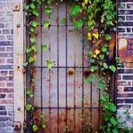 door and leaves