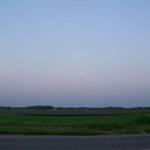 dusk in the field