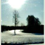 Early morning lensflare