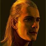 A Portrait Of An Elf