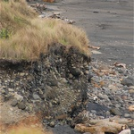 Embedded Rocks