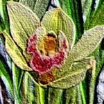 Flower embossed