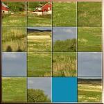 The Farm Puzzle