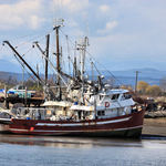 Fishing Boat at Low Tide on Fraser River