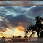 Last Sunset, 2006