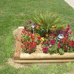 Local Garden