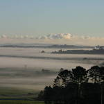 Still Mist