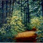 Sunlit path-painting