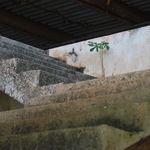 forgotten stairs 3