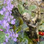gooseboy fountain & blue flowers