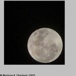Full Moon 21-07-05