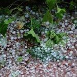 Garden hailstones