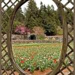 Biltmore Gardens