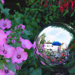 Gazing Ball & Flowers & Long Tall Sally and her dog