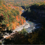 Genesee River Gorge in Shadow