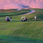 Pink Golf