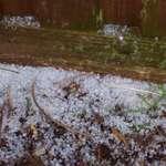 Autumn Hail