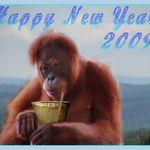 Happy New Year_2009